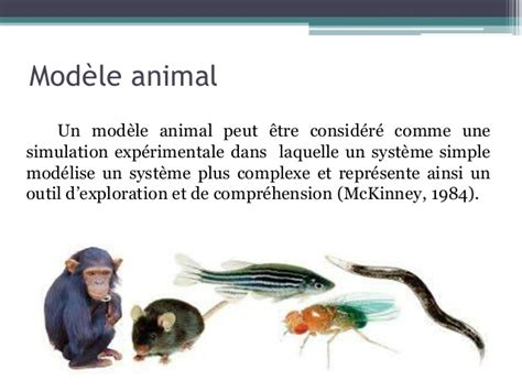 Animal models of depression and anxiety