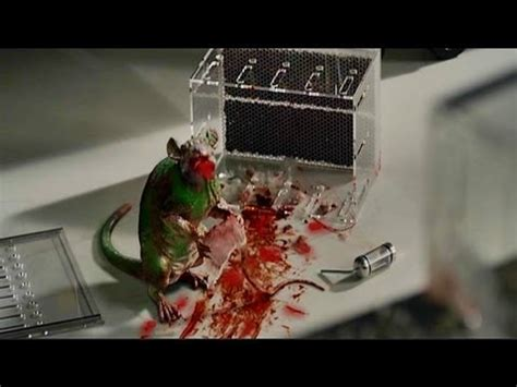 """FREDDIE """"THE LIZARD MOUSE"""" ★ THE AMAZING SPIDER MAN - YouTube"""